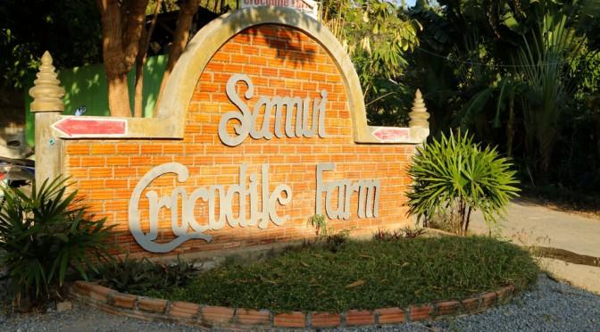 Как мы съездили в Samui Crocodile Farm