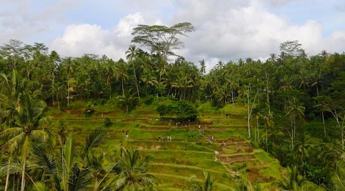 Бали. Прямо в душу